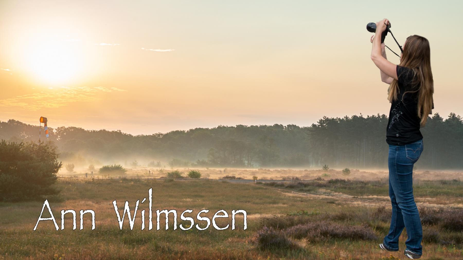 Ann-Wilemsen