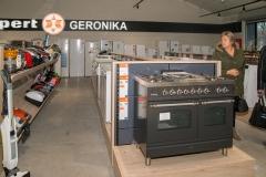 GERONIKA-6-van-8
