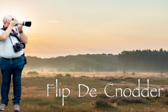 0-FLIP