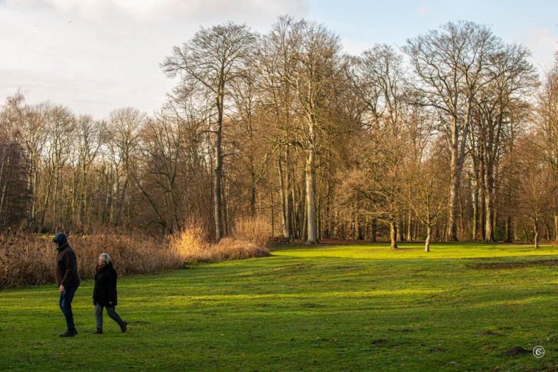 Jan-Vlemincktoren-Wijnegem-6