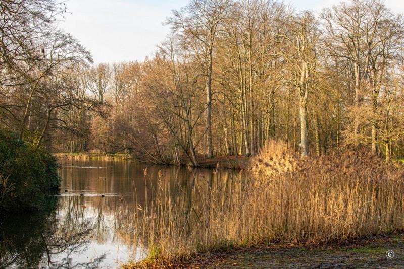 Jan-Vlemincktoren-Wijnegem-9