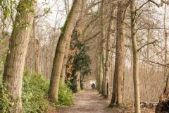 Jan-Vlemincktoren-Wijnegem-2
