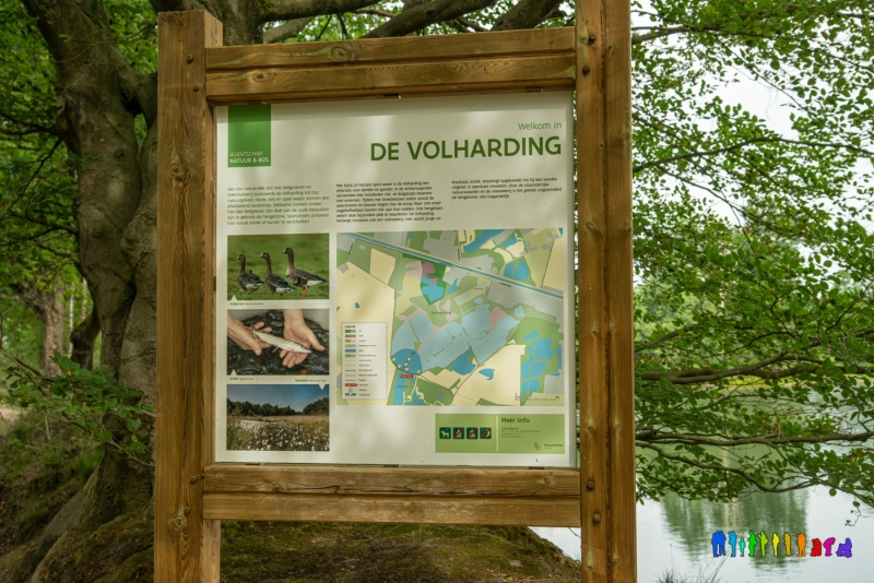 De-Volharding