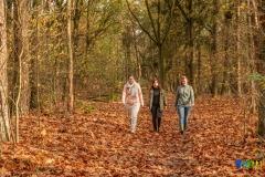 gemeente-molen-bos-11