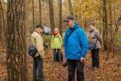 gemeente-molen-bos-4