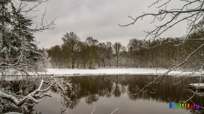 winterbeelden-35