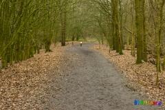 Wolvenberg-Briamondpark-11