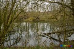 Wolvenberg-Briamondpark-6
