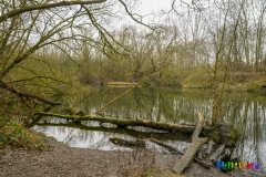 Wolvenberg-Briamondpark-9